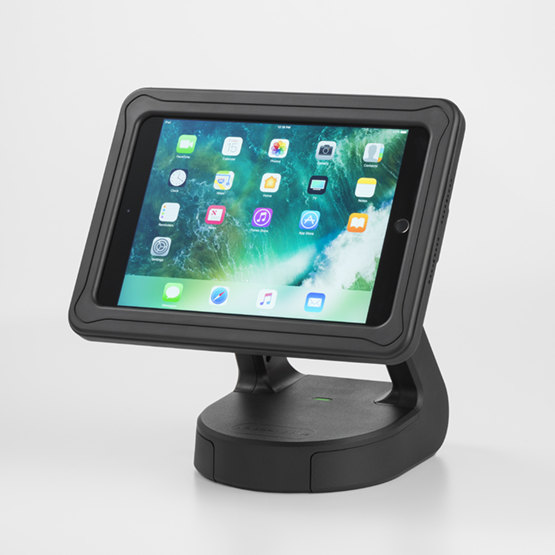 "RapidDoc Lite Kiosk with Echo Case for iPad 9.7"" (2017) in Black 700-00136"
