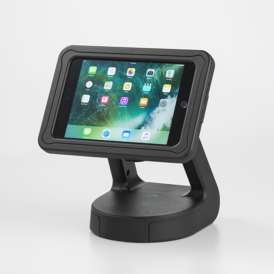 RapidDoc™ Lite Kiosk with Echo for iPad mini 4 in Black 700-00095